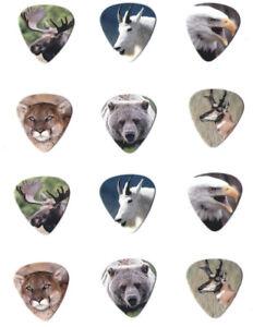 12-Bulk-Pack-Wild-America-Animal-Guitar-Picks-Eagle-Lion-Bear-Elk-Pick-Fun-USA