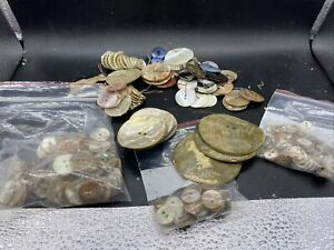 Lot of vintage shell buttons.  Abalone and Other Shells.  1LB Total.  Free Ship!