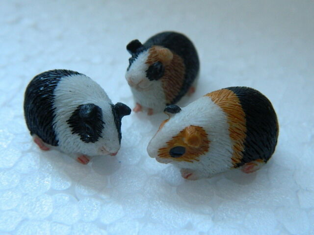 1//12th scale DOLLS HOUSE RESIN SET OF THREE ASSORTED GUINEA PIGS G25