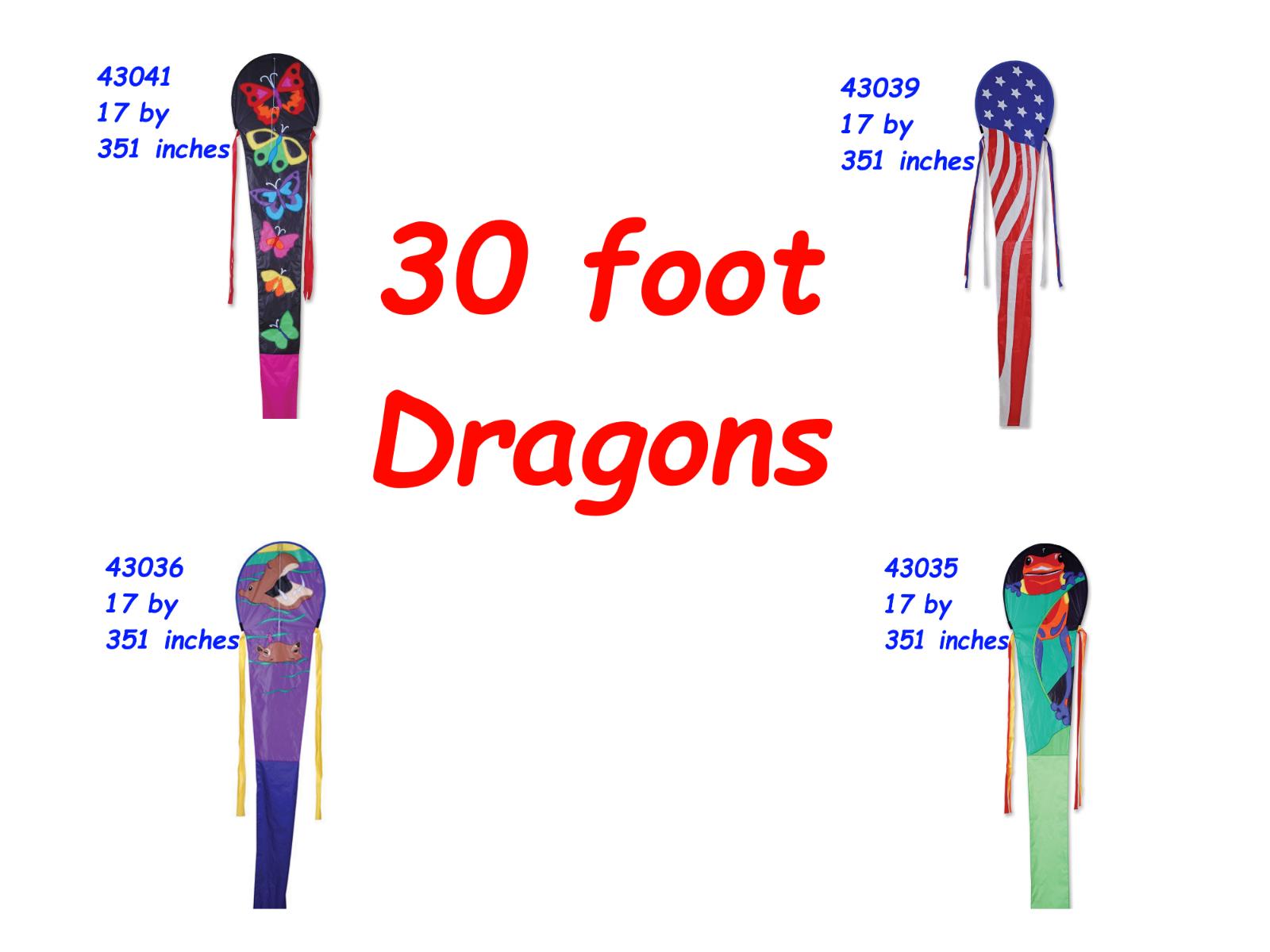 30 foot Dragon Kites by Premier Design