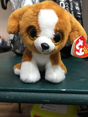 NEW MWMT 6 Inch SNICKY the Brown /& White Dog Ty Beanie Baby