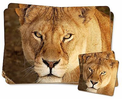 Aggressivo Lioness Twin 2x Placemats+2x Coasters Set In Gift Box, At-37pc