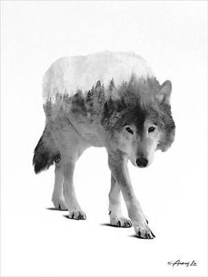 Art Print Framed or Plaque by Tonya Crawford TLC53-R White House