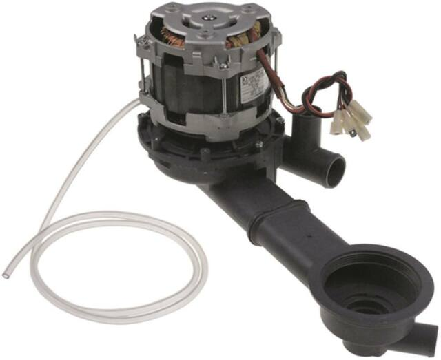 LGB LA50 Pumpe für Spülmaschine Colged Neotech-600 915211 915747 230V 915716