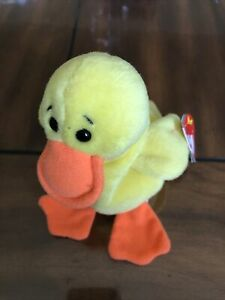 TY Beanie Baby Quackers  The Duck With Tag