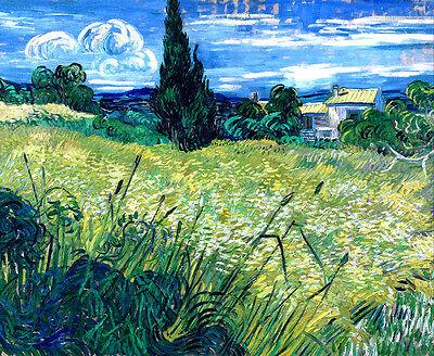 Van Gogh Green Wheat Field with Cypress canvas print giclee 8X12&12X17