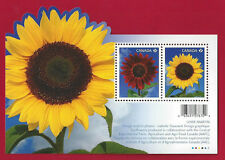 2011  Canada  Permanent   # 2440  ss    SUNFLOWERS    Bright  Fresh Pristine Gum