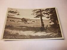 Postkarte Ansichtskarte Glatzer Bergland Schneeberg Schweizerei Schlesien v1945