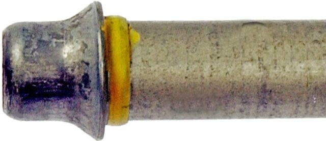 Engine Oil Cooler Hose Assembly Lower Dorman 625-130