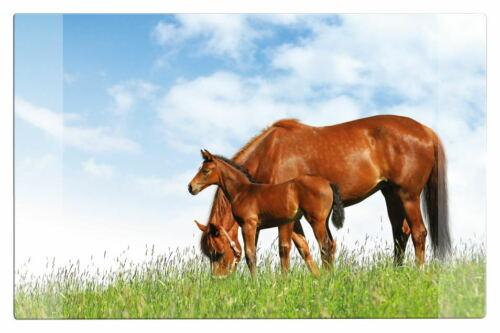 """Schreibtischunterlage Größe 68x44cm /""""Pferde/"""""""