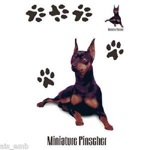 Min-Pin-Pinscher-Dog-HEAT-PRESS-TRANSFER-for-T-Shirt-Tote-Sweatshirt-Quilt-878a