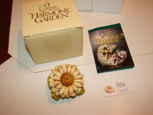 1-HARMONY-KINGDOM-Lord-Byron-039-s-Harmony-Garden-Daisy-II-ED-1-New-In-Box