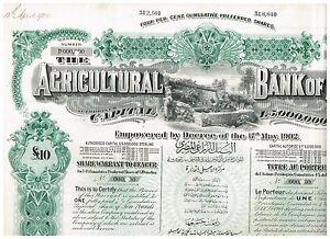 Agricultural-Bank-of-Egypt-1905-1-share-warrant-nice-SPECIMEN