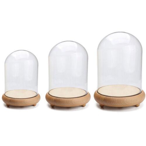LED Glasglocke Deko Glas Kuppel Nachtlicht Glashaube Glasdom Weihnachten Base