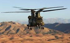 """Royal Air Force Chinook Helicopter Sahara North Africa 12x8"""" Photo RAF Odiham"""