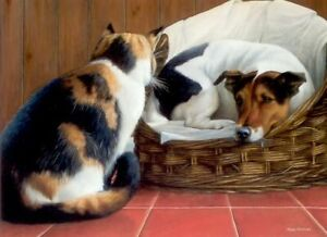 Nigel-Hemming-SQUATTERS-RIGHTS-Jack-Russell-Terrier-Cats-Dogs-Basket-Humour-Fun