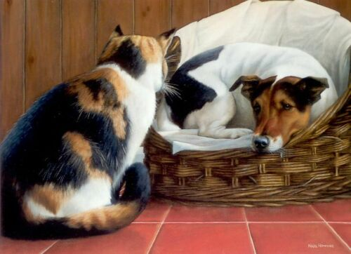 Nigel Hemming SQUATTERS RIGHTS Jack Russell Terrier Cats Dogs Basket Humour Fun