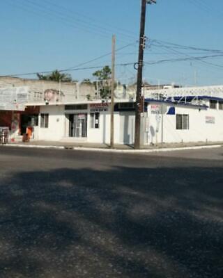 Local - Guadalupe Mainero
