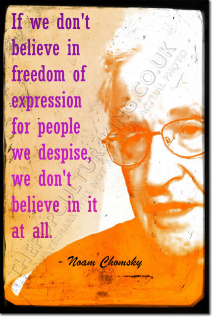 "NOAM CHOMSKY ART PRINT PHOTO POSTER GIFT ""FREEDOM OF EXPRESSION"""