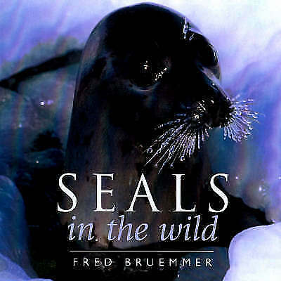 Seals in the Wild, Bruemmer, Fred, Very Good Book