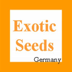 Passiflora-sexflora-10-Samen
