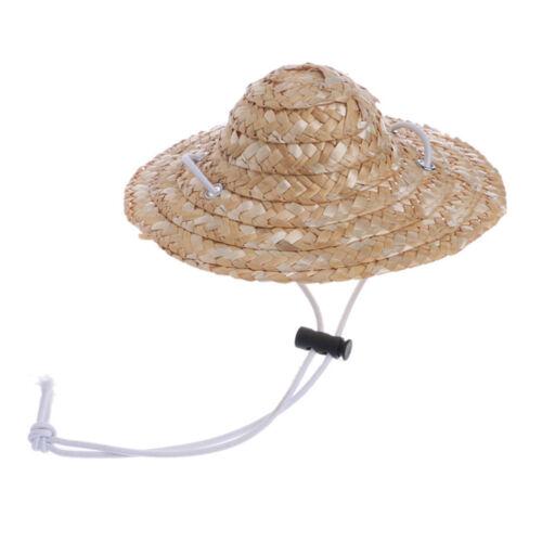 Small Cool Accessories Sombrero Sun Pet Straw Hat Dog Caps Hawaiian Style Cat