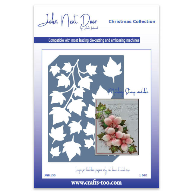 New John Next Door Metal Cutting Die Christmas Poinsettia  JNDCC017