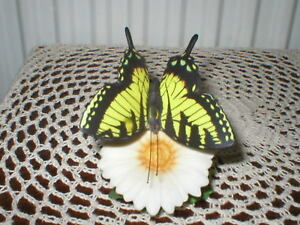 FRANKLIN-MINT-THE-BUTTERFLIES-OF-THE-WORLD-TIGER-SWALLOWTAIL-BY-B-HARGREAVES