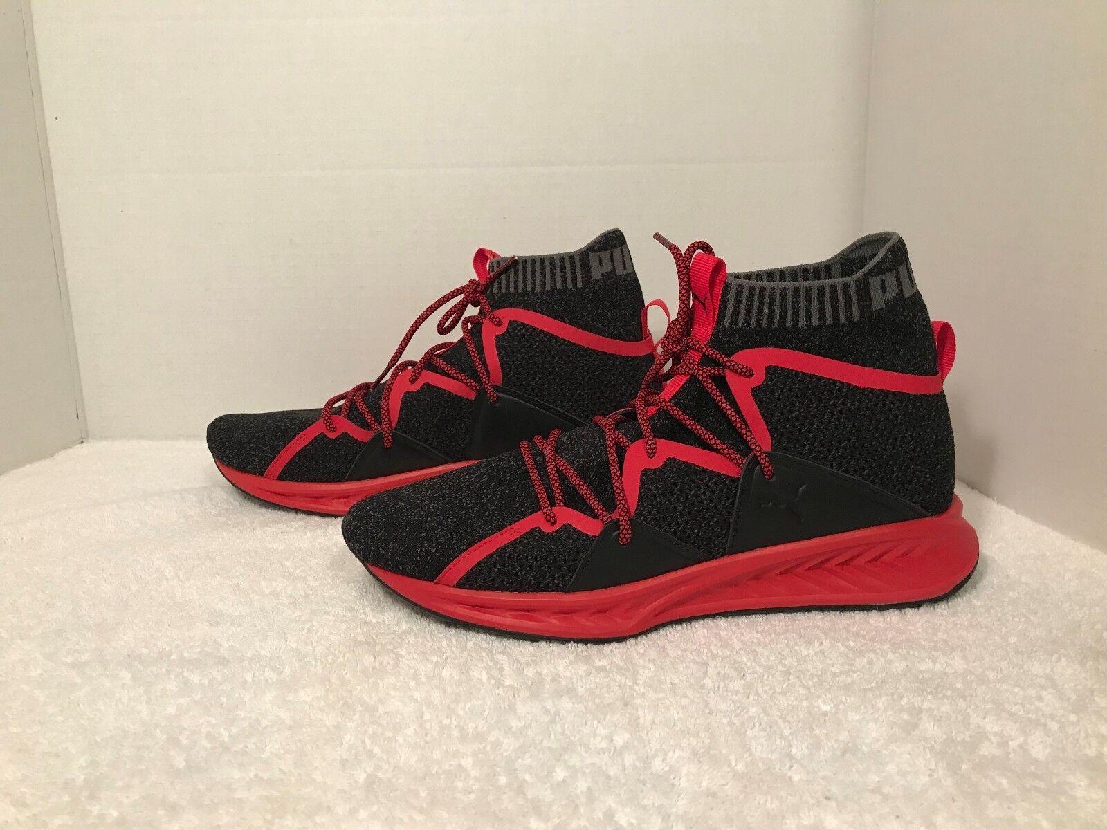 the latest c6bed 1a13e PUMA Men's Ignite shoes Training Evoknit Wave f970eaopl25044 ...