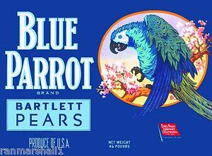 Bancroft Contra Costa Aloha Farms Bartlett Pear Fruit Crate Label Art Print