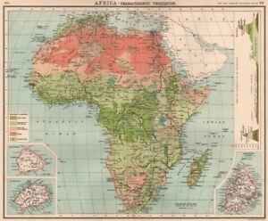 Africa Vegetation With Vertical Distribution Of Vegetation