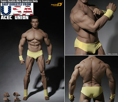 1//6 Phicen Super Flexible Male Muscular Seamless Body Tbleague M34 In Stock Now