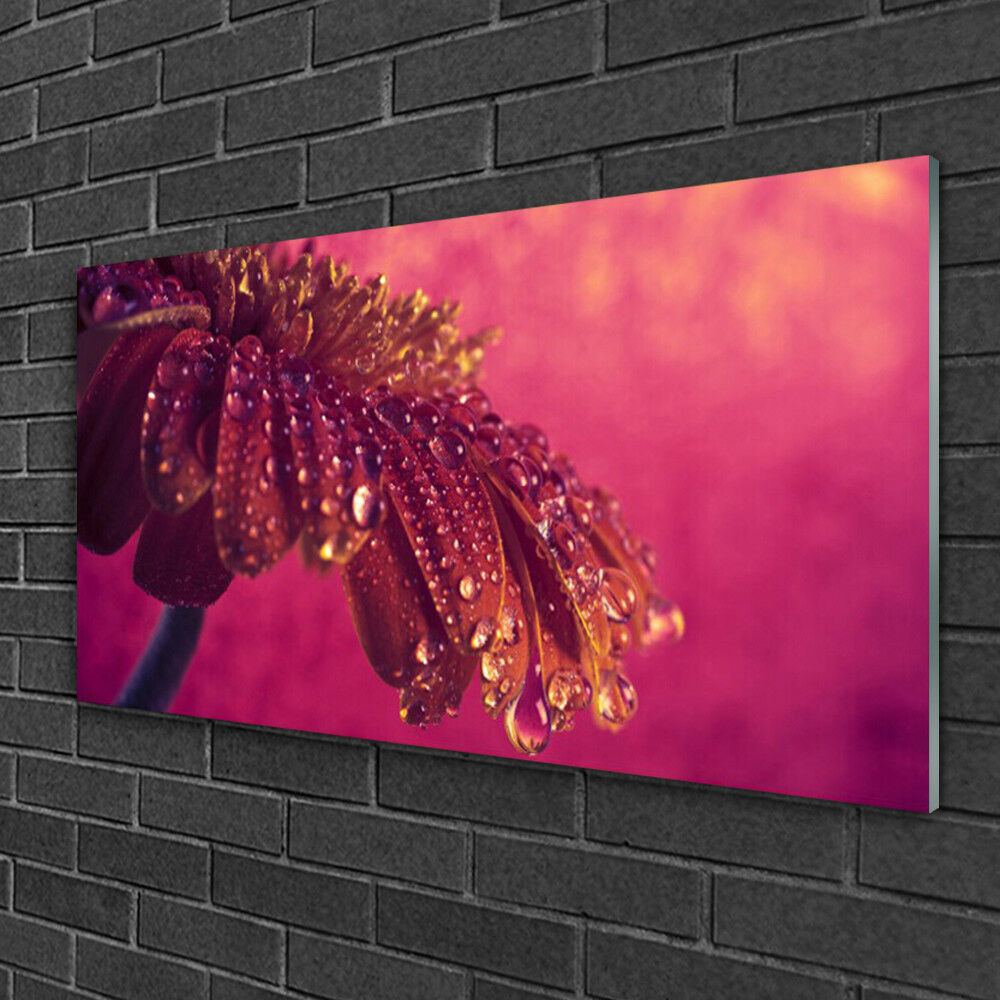Immagini parete 100x50 Vetro Immagine Stampa su vetro PIANTE ALBERO