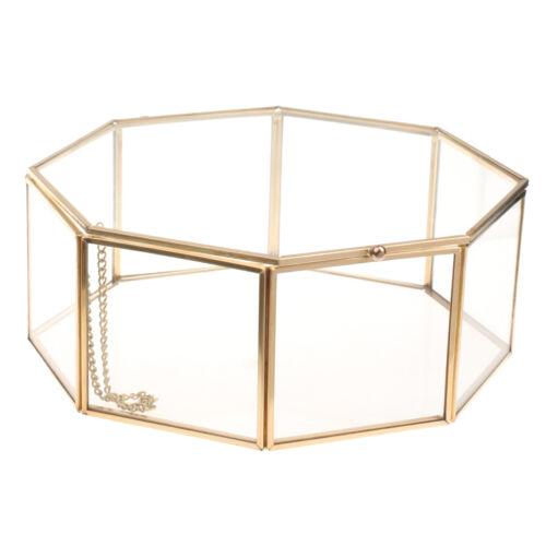 Geometric Terrarium Metal Glass Succulent Plant Jewelry Box 24.5x24.5x10 cm