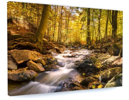 STUNNING WOODLAND FOREST WATER STREAM LANDSCAPE CANVAS PICTURE PRINT #4202