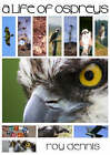 A Life of Ospreys by Roy Dennis (Paperback, 2008)