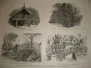 Australia-y-Nueva-Zelanda-exhibe-colonial-y-exposicion-indio-1886-Impresiones-Antiguas
