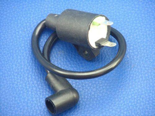 Bobina de ensendido para krafthertz los productores de electricidad de 1,47 kw//850 vatios