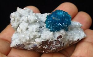 Cavansite-with-Stilbite-on-matrix-of-Heulandite-Wagholi-Pune-India-6174
