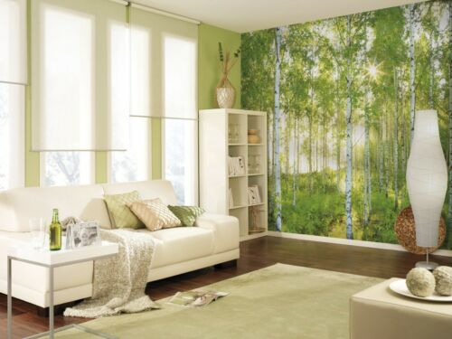 368x254cm Giant Wall mural photo wallpaper for bedroom /& living room Spring Lake