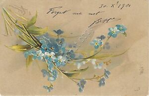 Cartolina-Postcard-Illustrata-Klein-Innamorati-Forget-me-not-1901