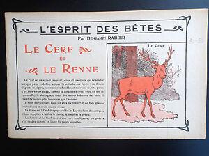 RARISSIME-L-039-esprit-des-Betes-Benjamin-Rabier-Le-cerf-et-le-renne-TTBE-annees-20