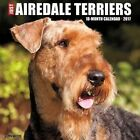 Just Airedale Terriers by Willow Creek Press 9781682340066 Calendar 2016