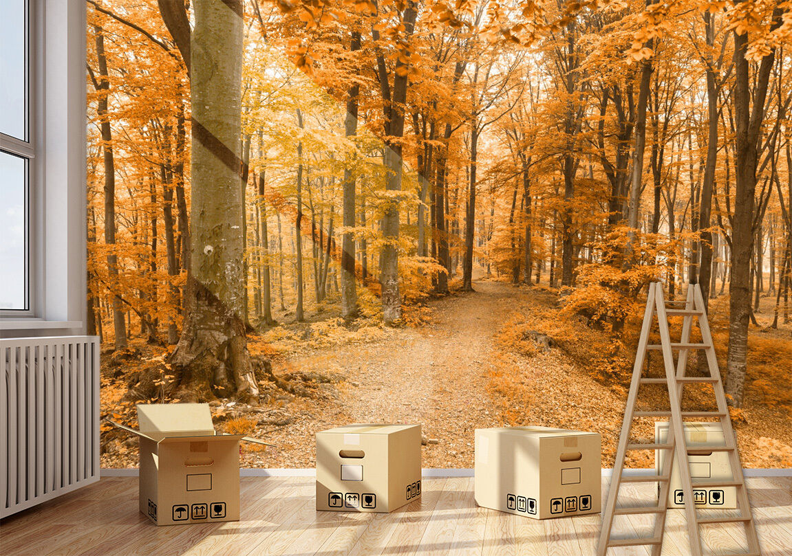 3D Forest Wood Tree Path Wall Paper Wall Print Decal Wall AJ WALLPAPER CA