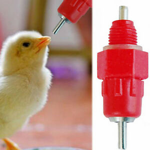10PCS  Poultry Water Drinking Nipples - Chicken Hen Automatic Drinker & Fitting