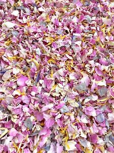 Pink-Grey-Yellow-Rose-Petals-Natural-Biodegradable-Wedding-Confetti-Dried-Flower