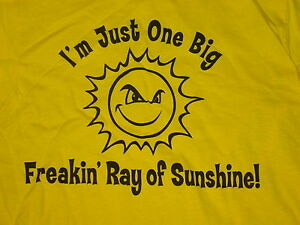ONE BIG RAY OF SUNSHINE sarcasum NEW T-Shirt Funny Cute sz ... (300 x 225 Pixel)