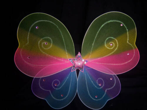 Rainbow  Fairy Princess Tinkerbell or Butterfly Wings.