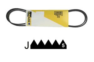 1161J5 MAEL Courroie pour lave linge extensible 55X2987 5PJE1161 351834