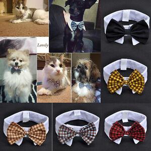 Fashion Adorable Dog Cat Pet Puppy Kitten Toy Bow Tie Necktie Collar Clothes